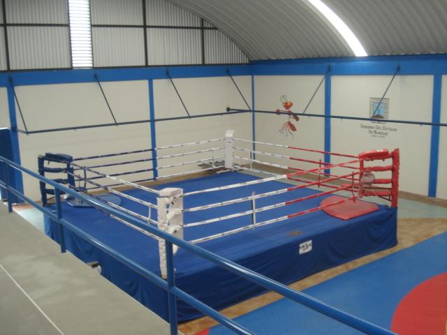 2011 p gina 127 zona centro noticias for Gimnasio de boxeo