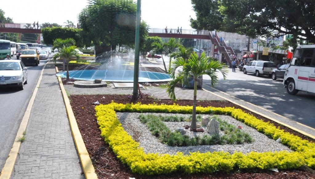Aspectos de las Jardinera de la Avenida Plan de Ayala Frete al Seguro ( IMSS ) (3)