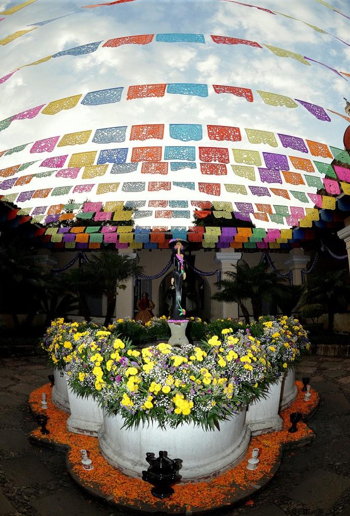 Miquixtli en el Jardín Borda, Cuernavaca, Octubre, 2014 (1)